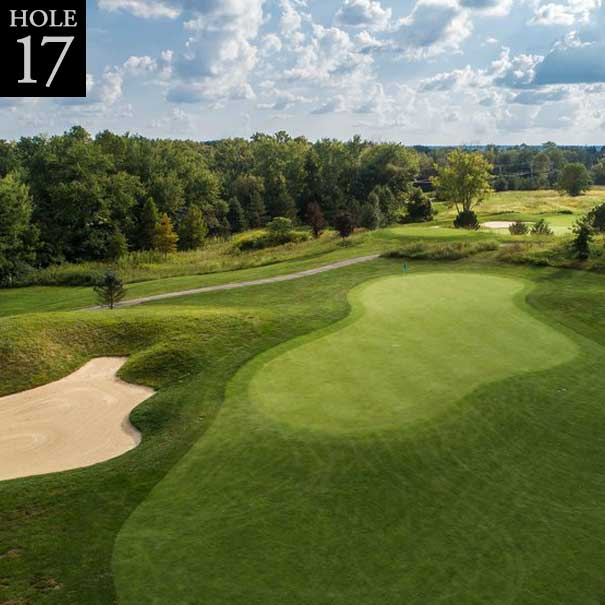 aerial view of hole #17 green
