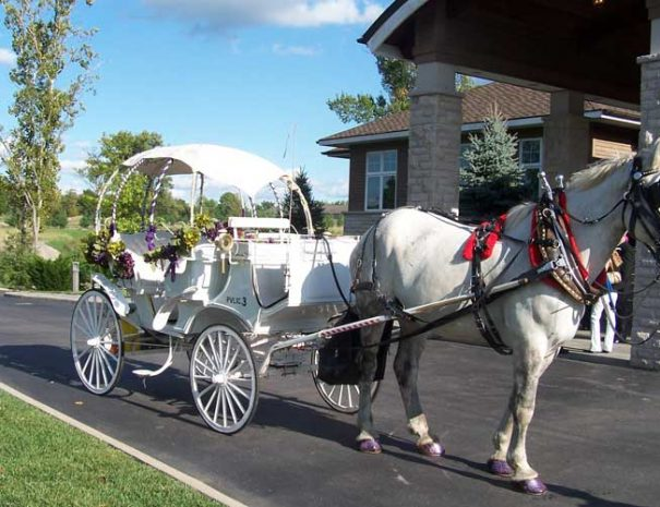 horse drawn carriage in front of clubhouse